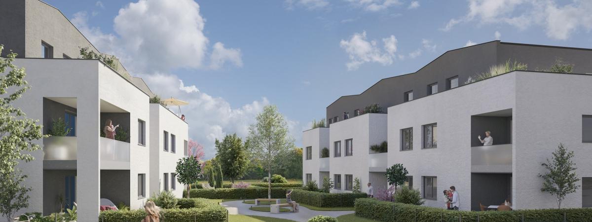 Programme immobilier neuf griesheim près Molsheim - Ginkgo
