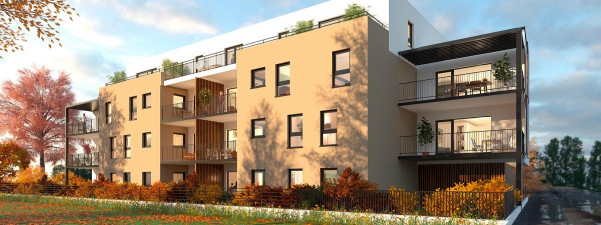 Programme immobilier neuf Néhome - Strasbourg