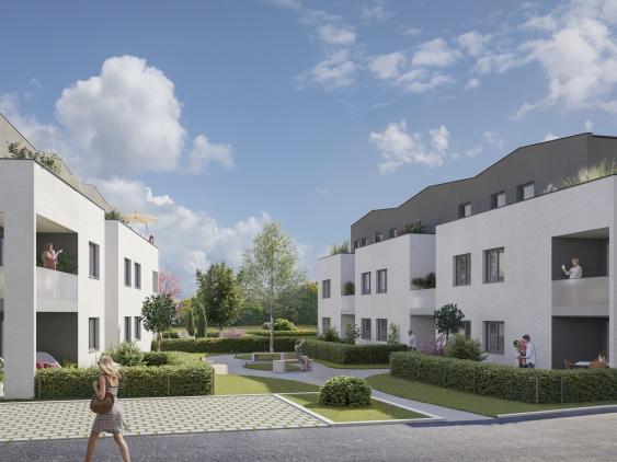 Programme immobilier neuf Griesheim-près-Molsheim - Ginkgo